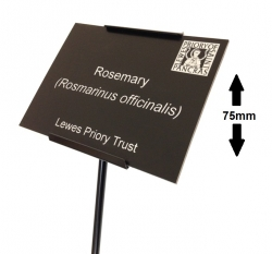 Plant Label with Black Metal Label Holder